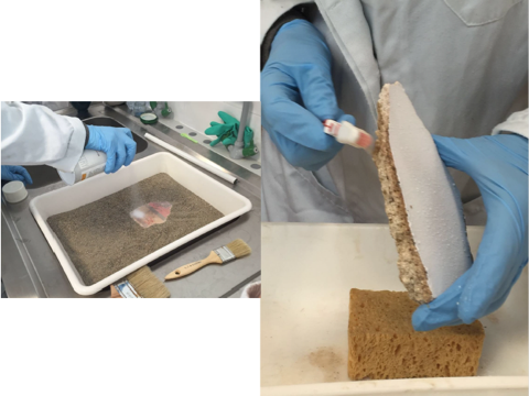 Protezione della superficie policroma con ciclododecano e pulitura dei bordi e del retro